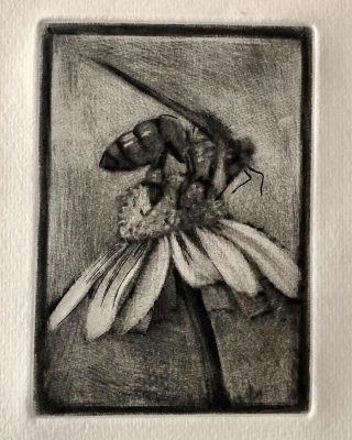 Mezzotint first state 🐝